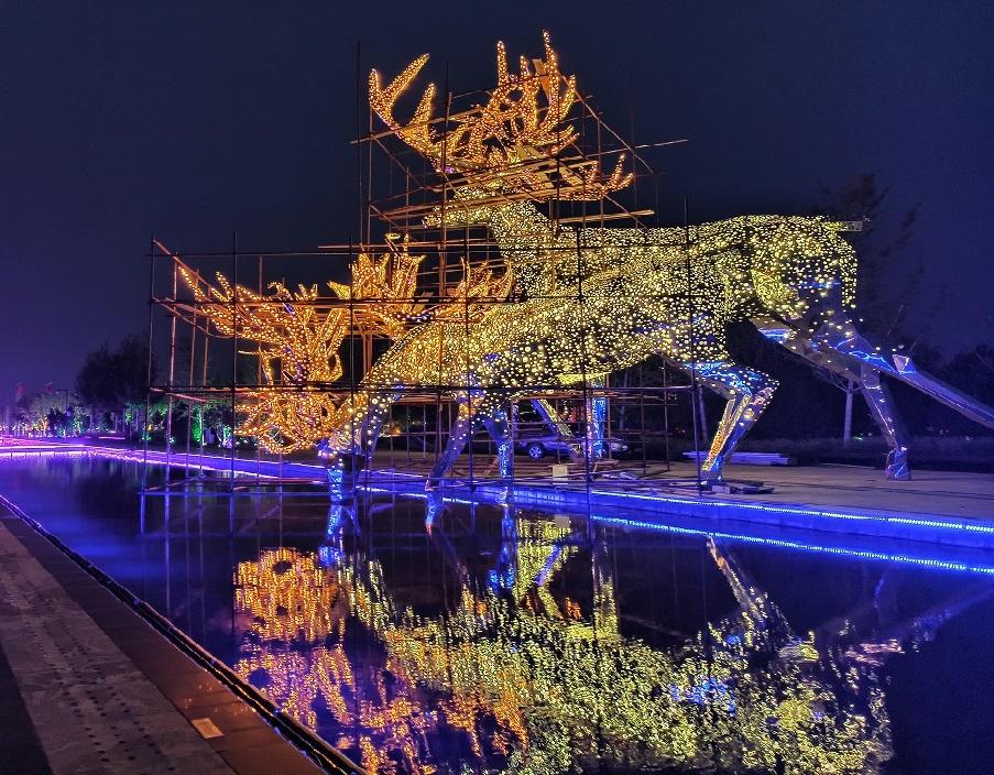 """国际展览中心广场的""""鹿""""美翻了"""